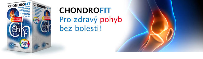 Chondrofit 90 tablet